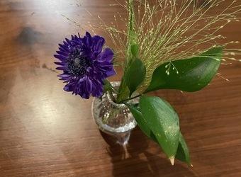 お花のある暮らし💐【今泉のプライベートサロンmiroa】
