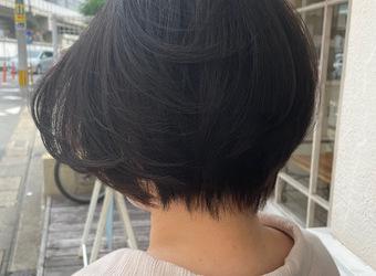 縮毛矯正で柔らかショートヘア💫【今泉のプライベートサロンmiroa】
